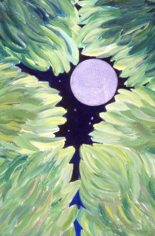 solstice picture 02